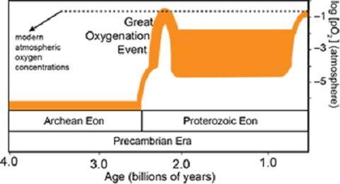 Nitrogen Revolution: Study breathes new life into 2.3 billion year old 'Great Oxidation Event'