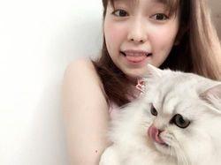 猫と戯れる島崎遥香がかわいい件wwただし塩対応ww(画像)