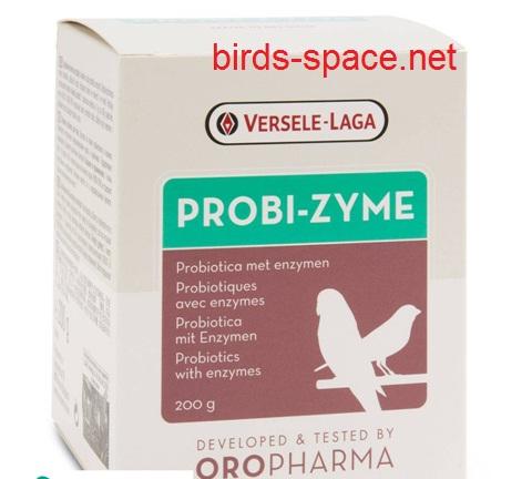 من اليوم الخامس إلى اليوم التاسع قدم له البروبيوتيك ( Pro-biotiques)  و ذلك لإعادة التوازن للفلورا المعوية للطائر الجديد الذي يكون عنده اختلال في البكتيريا النافعة نتيجة الإرهاق ، الفزع و تغيير النظام الغذائي
