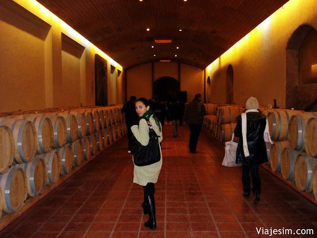 Lua de mel no Chile roeiro completo vinicolas concha y toro e emiliana
