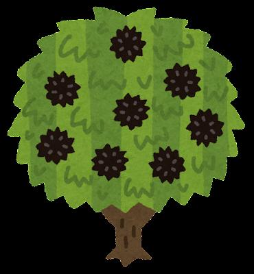 栗の木のイラスト