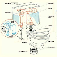 Parts Diagram of a Toilet