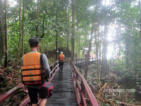 Kawasan hutan di Pulau Kakaban