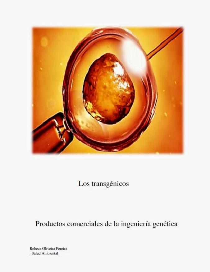 https://sites.google.com/site/fernandomarati/pdf/Rebeca%20Oliveira.pdf