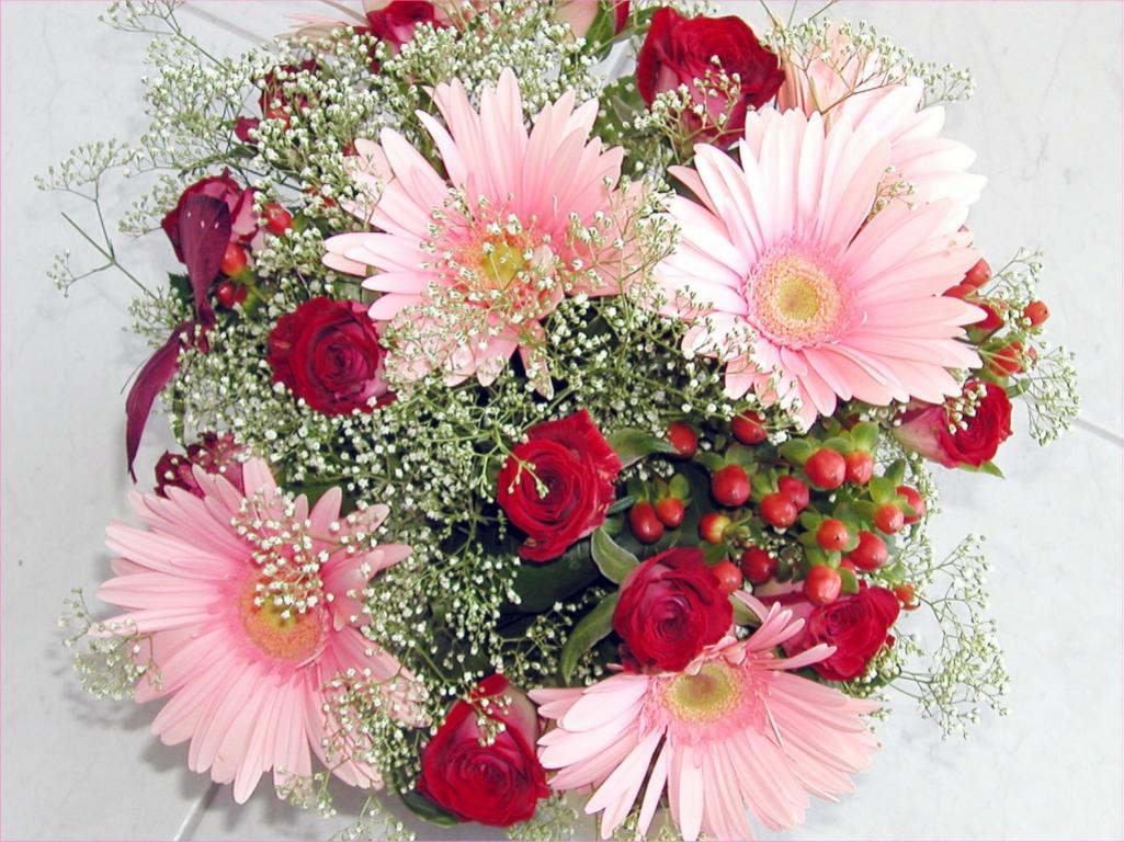 World Flowers : Beautiful Flowers