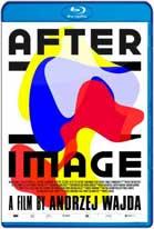 Los Ultimos Años del Artista: Afterimage (2016) HD 1080p Español