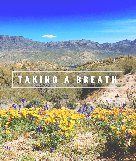 Taking A Breath // Bubby and Bean
