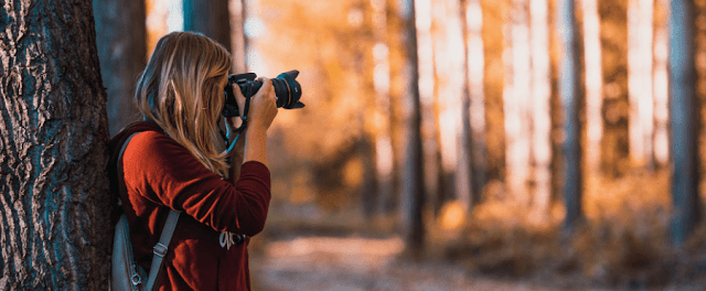 5 Free stock photos Collection Site List