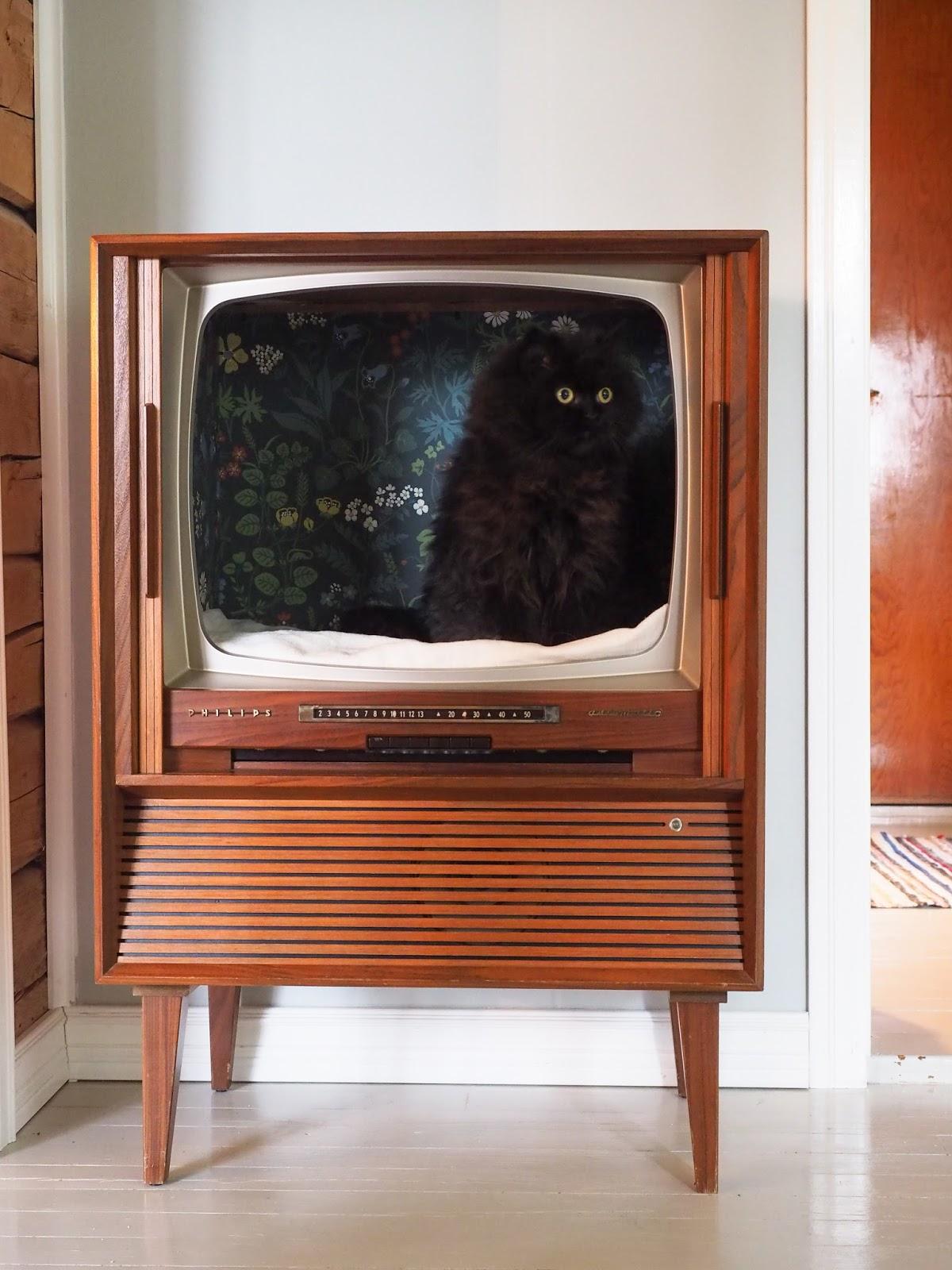 diy kissanpeti vanhasta televisiosta
