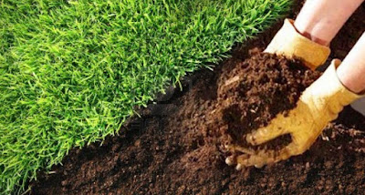 vermicompost kompos organik kotoran cacing