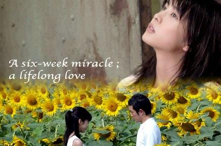 Be With You (2004), Sebuah Film Romansa Terbaik Jepang!