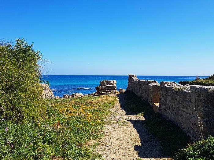 TUNISIE CAP BON BLOG NIMOISE NIMES 4