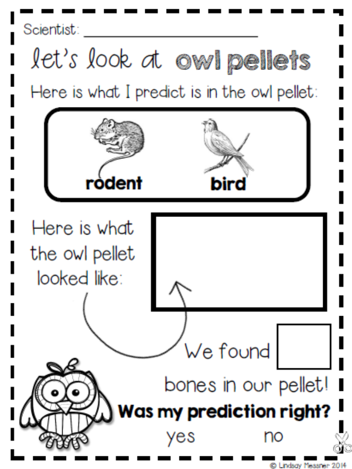 Teacher Bits and Bobs: Playing With Owl