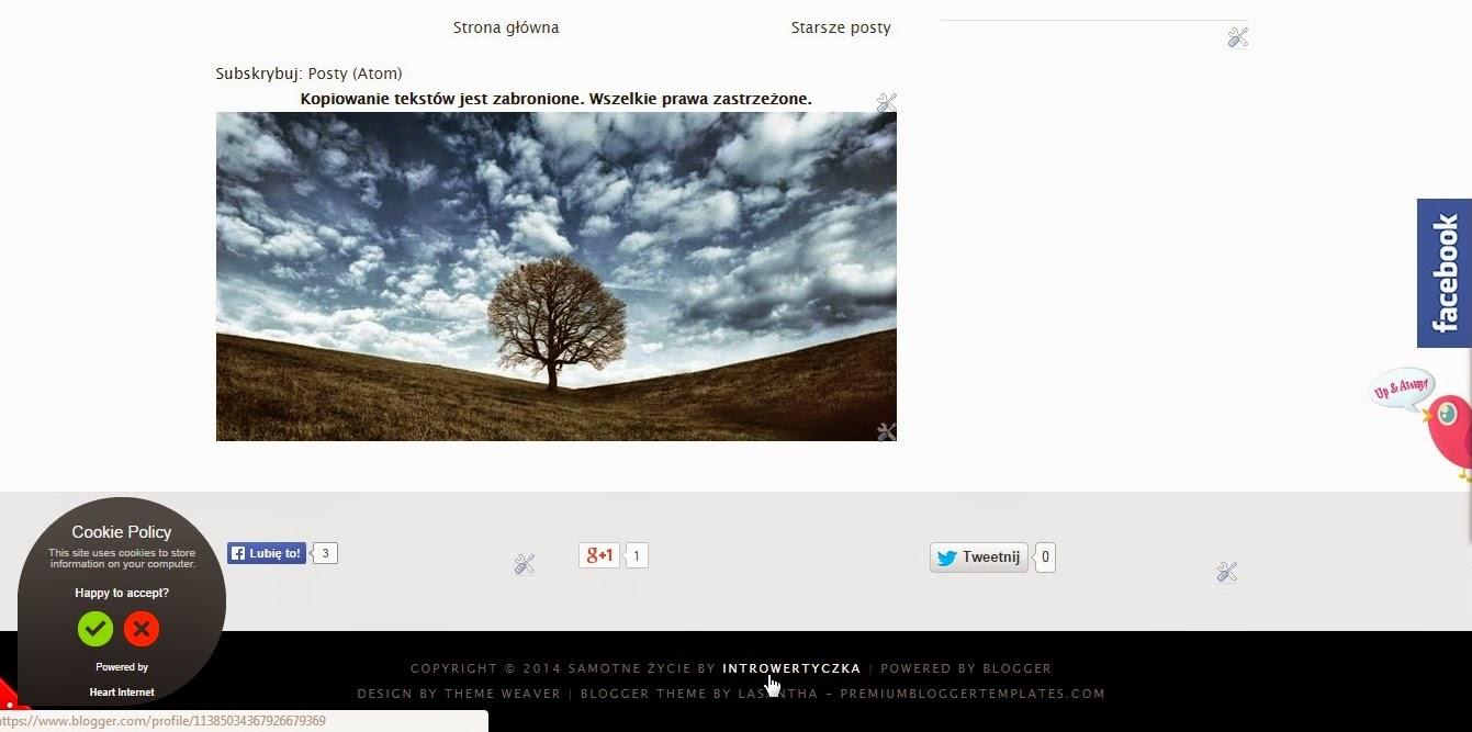 Profil w stopce bloga