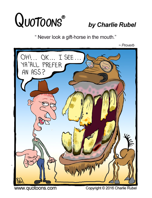 Never look a gift horse in the mouth proverb quotoons by never look a gift horse in the mouth proverb negle Image collections