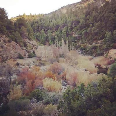 Tramo camino natural Matarraña