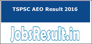 TSPSC AEO Result 2016