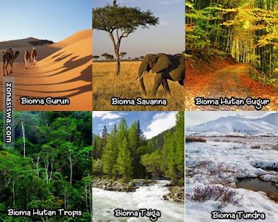 Ekosistem Darat, Pengertian Ekosistem Darat, Apa itu Ekosistem Darat, Definisi Ekosistem Darat, Jenis-jenis Ekosistem Darat, Macam-macam Ekosistem Darat, Ciri-ciri Ekosistem Darat, Gambar Ekosistem Darat, Ekosistem Darat Bioma Gurun, Ekosistem Darat Bioma Savana, Ekosistem Darat Bioma Hutan Gugur, Ekosistem Darat Bioma Hutan Tropis, Ekosistem Darat Bioma Taiga, Ekosistem Darat Bioma Tundra.