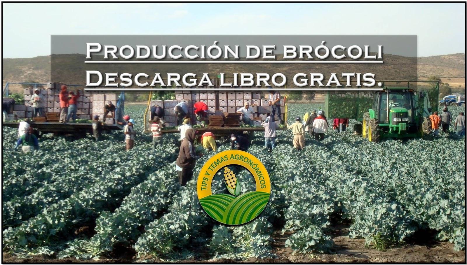 Libros Y Noticias De Agronomia : Tesis Producción De