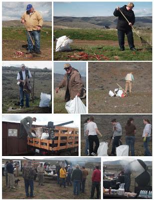 Past Cleanups