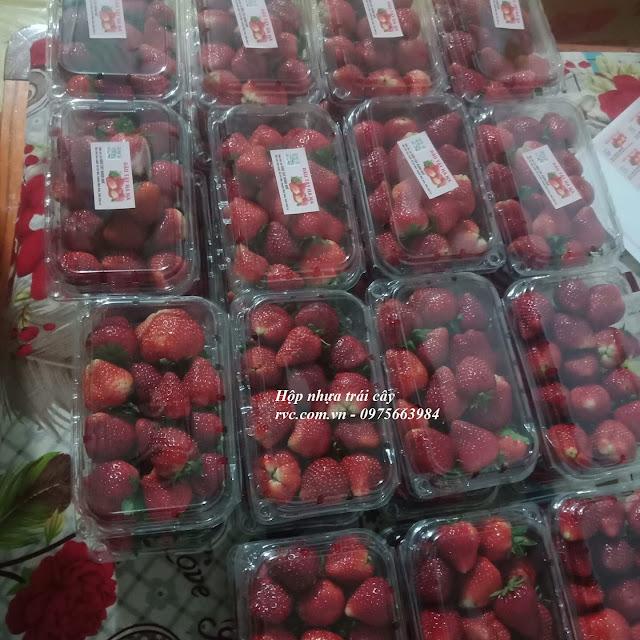 Hộp nhựa trái cây TPHCM giá rẻ