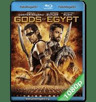 DIOSES DE EGIPTO (2016) FULL 1080P HD MKV ESPAÑOL LATINO