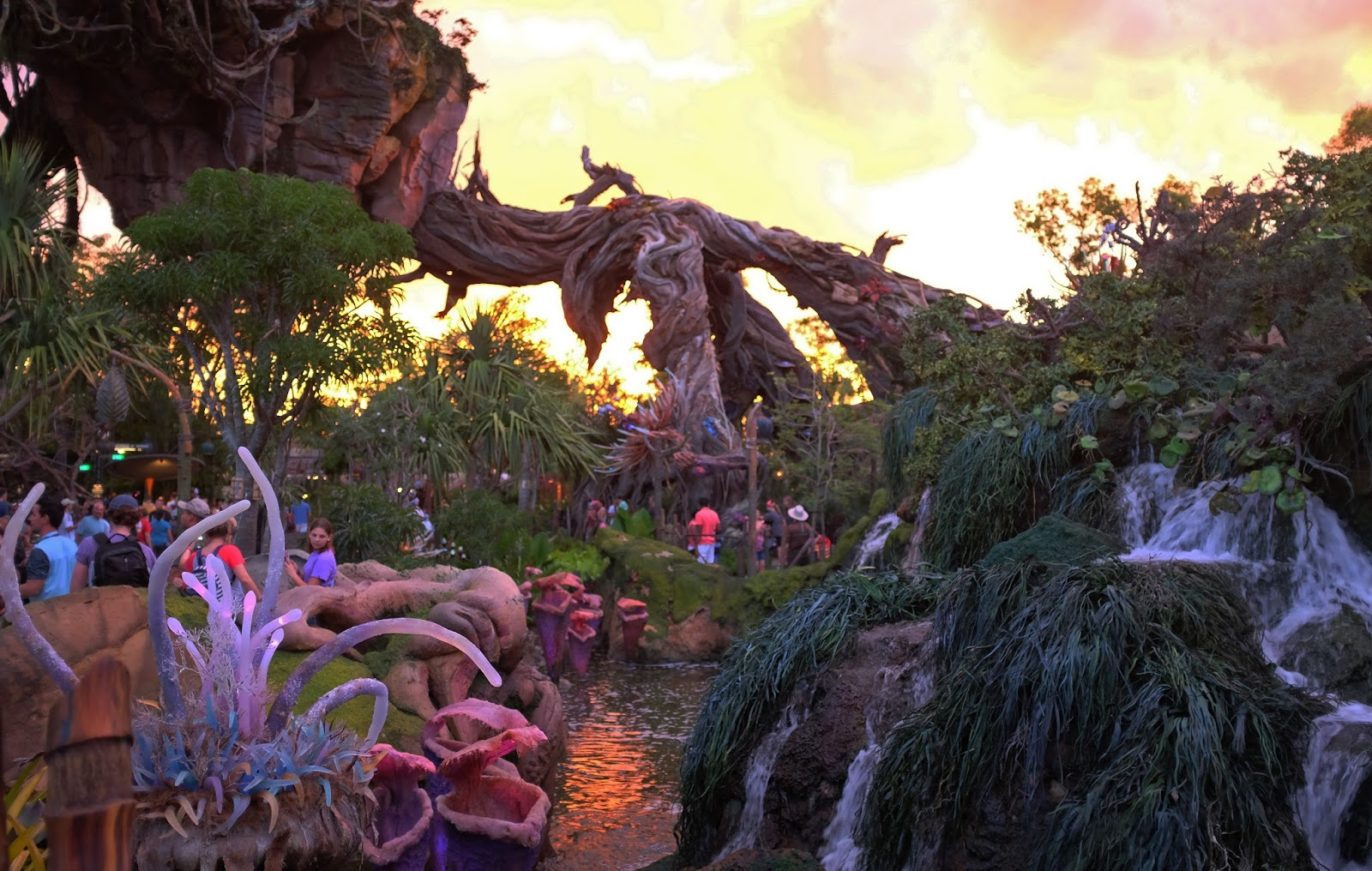 Pandora - The World of Avatar at sunset
