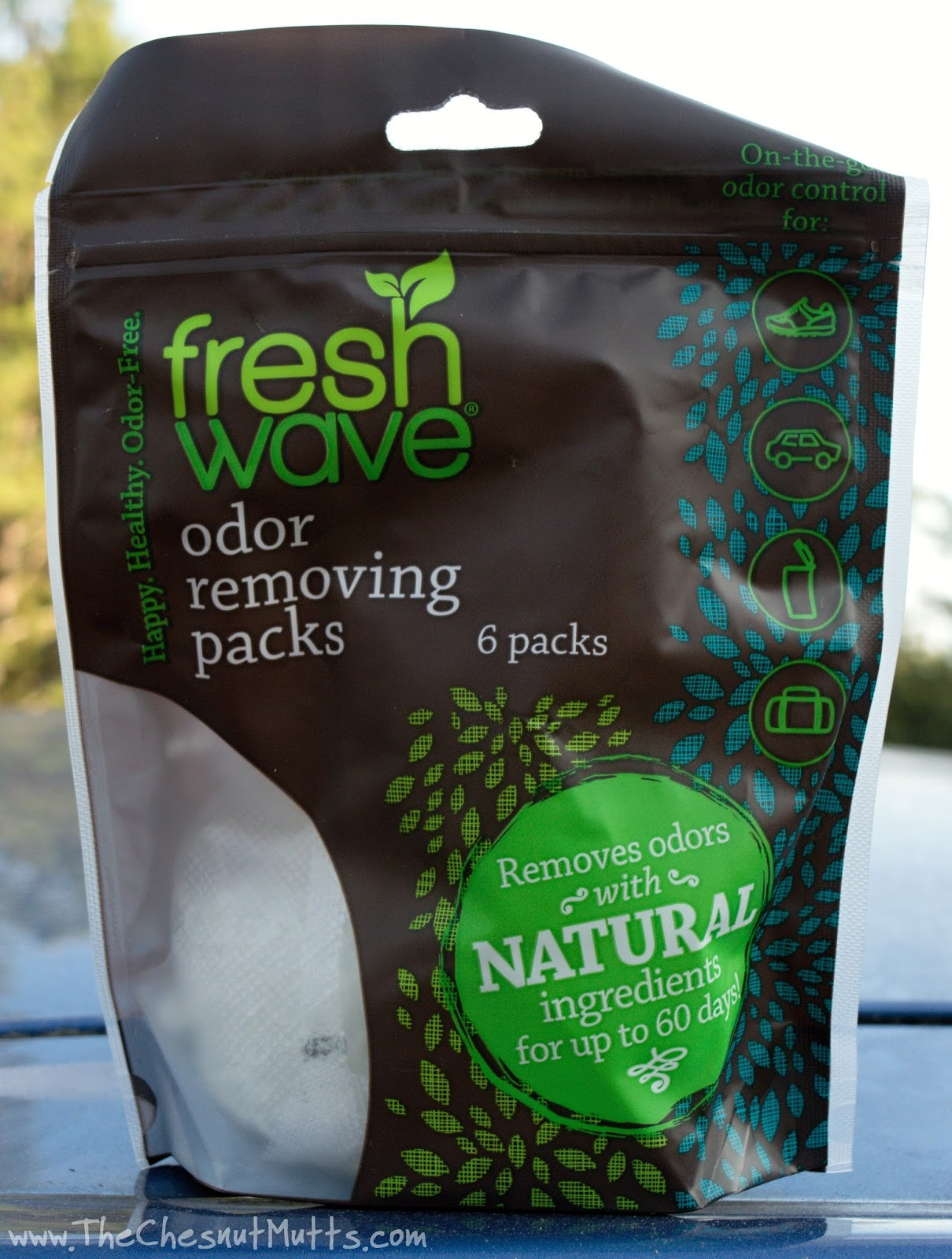 Review giveaway freshening up your pet filled home with for Remove odor from house