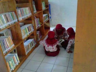 Tugas Pokok, Fungsi dan Peran Perpustakaan