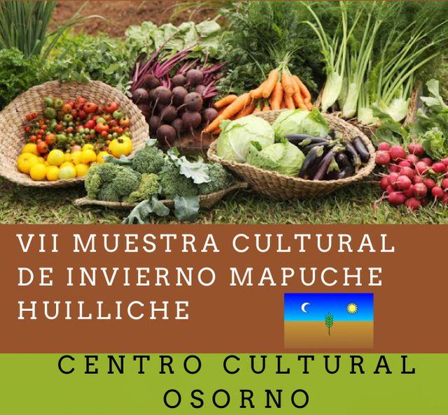 VII Muestra Cultural Mapuche Huilliche  en Osorno