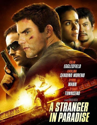 Poster Of Hollywood Film A Stranger in Paradise (2013) In 300MB Compressed Size PC Movie Free Download At worldfree4u.com