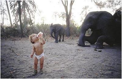 Tippi Degré - Το κορίτσι που μεγάλωσε με τα άγρια ζώα της Αφρικής