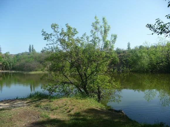 Алексеево-Дружковка. Озеро