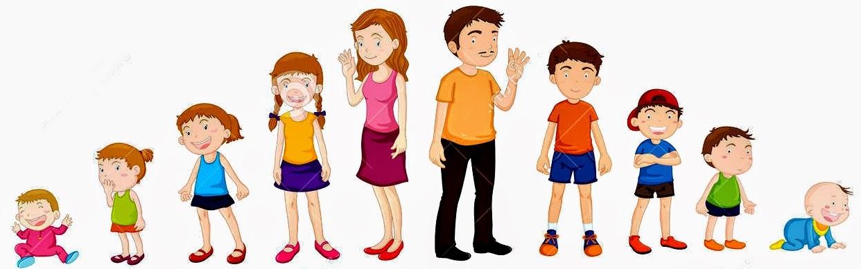 etapas de desarrollo del niño o niña 1e7bd18d357