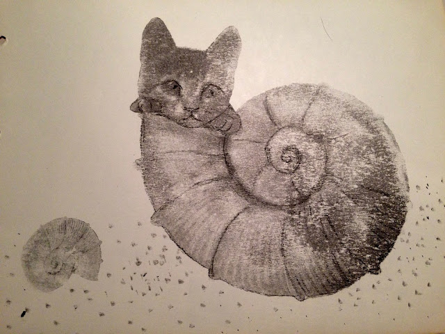 #AideLL #catofshell #cat #cute #shell #illustration #art