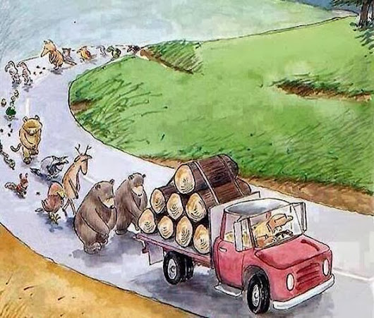 Nature's funeral procession, brilliantly portrayed.