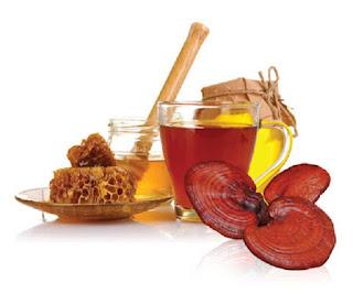 nấm linh chi và mật ong