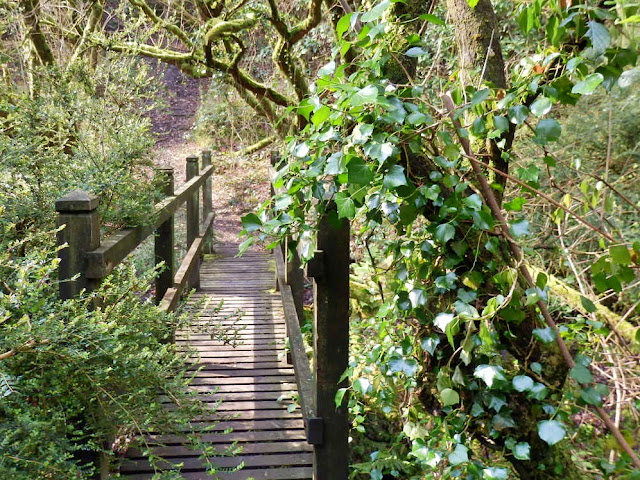 Small wooden Bridge, Gover Valley, St.Austell