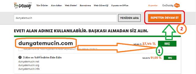 GoDaddy'de Domain Seçme