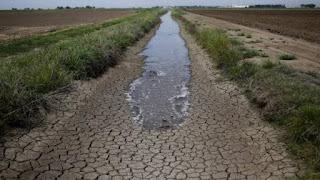 Ivóvízkezelés és vízgazdálkodás