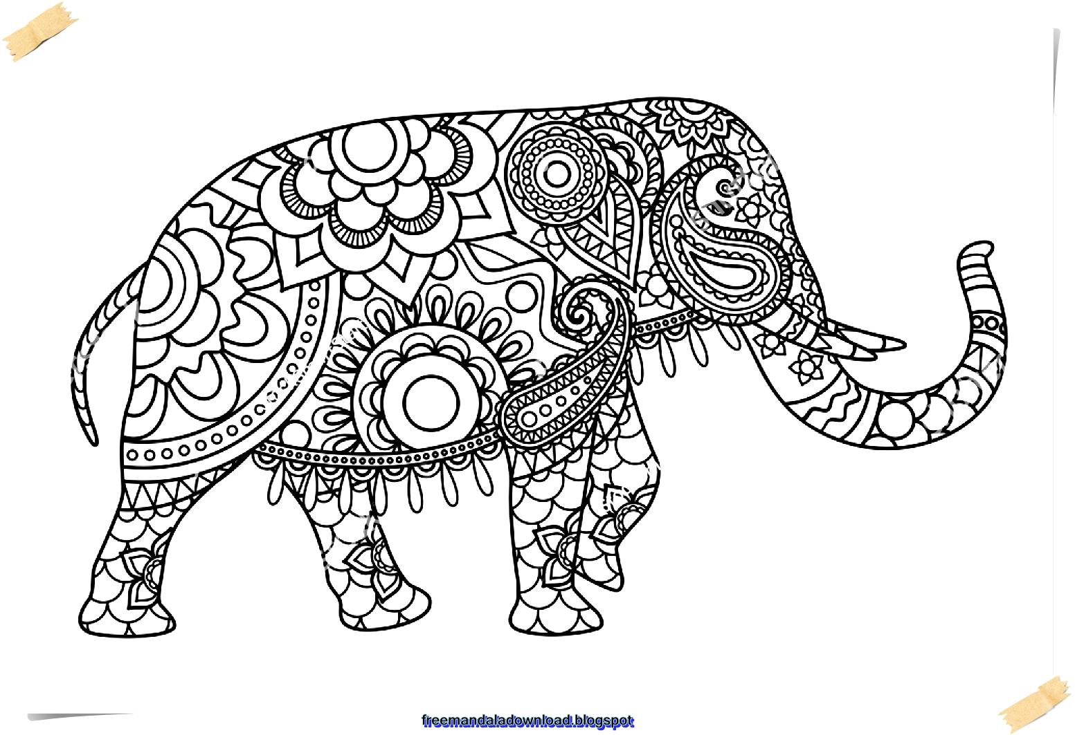 malvorlagen mandala elefant  coloring and malvorlagan