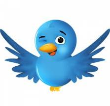 Cara Mudah Memasang Burung Twitter Terbang di Blog