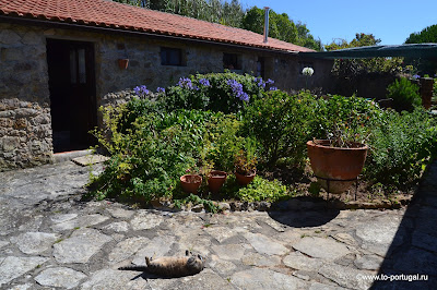 снять недорого домик в Португалии