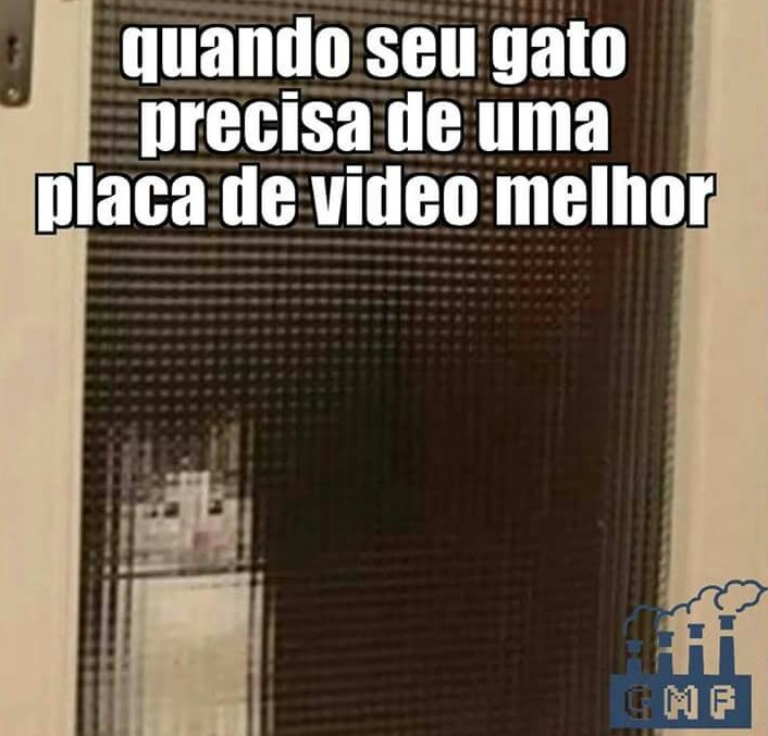 gato placa de video melhor