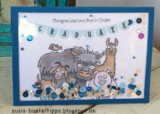 flache Schüttelkarte Anleitungsvideo von Stampin' Up! Demonstratorin in coburg, shaker card pick a pennant rasselbande, jeansblau