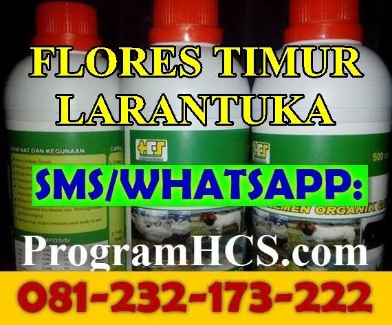Jual SOC HCS Flores Timur Larantuka
