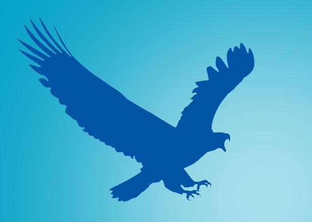 البرنامج الرائع فى تحميل الملفات من الانترنت 2.0.4.7 eagleget تحديث 2016