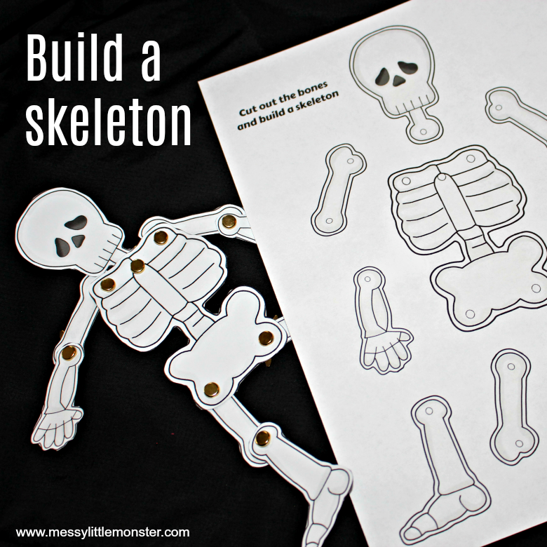 build a human skeleton activity for kids using skeleton parts