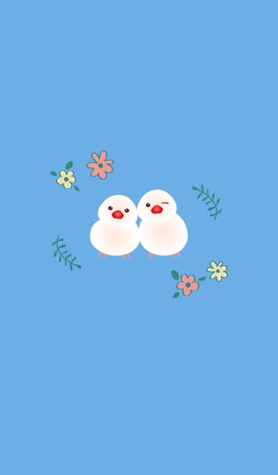 Flower white bird couple file