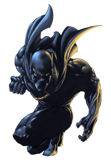 PNG-The Black Panther //Marvel